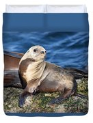 Sea Lion Pup Duvet Cover