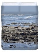 Sea Lion Resort Duvet Cover