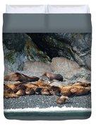 Sea Lions On The Sea Shore Duvet Cover