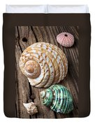 Sea Shells With Urchin  Duvet Cover