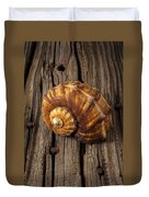 Sea Snail Shell On Old Wood Duvet Cover