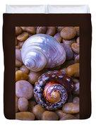 Sea Snail Shells Duvet Cover