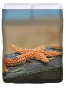 Sea Star Trio Duvet Cover