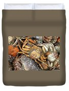 Seafood Duvet Cover