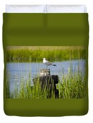 Seagull At Weeks Landing Duvet Cover by Bill Cannon