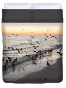 Seagulls Feasting Duvet Cover