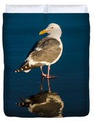 Seagull Harris Beach - Oregon Duvet Cover