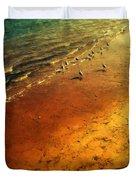 Seagulls At Sunset Duvet Cover