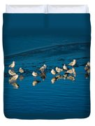 Seagulls On Frozen Lake Duvet Cover