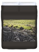 Seal - Montague Island - Austrlalia Duvet Cover