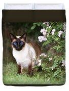 Seal Point Siamese Cat Duvet Cover