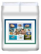 Seashell Collection 4 - Collage Duvet Cover