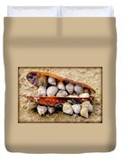Seashell Reunion Duvet Cover