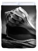 Seashell Without The Sea 3 Duvet Cover by Bob Orsillo