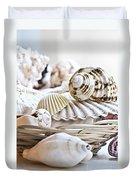 Seashells Duvet Cover by Elena Elisseeva