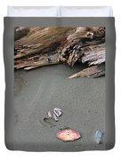 Seashells On The Seashore II Duvet Cover