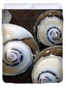 Seashells Spectacular No 23 Duvet Cover