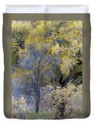 Sedona Fall Color Duvet Cover