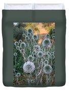Seed Head Of Leek Flower Allium Sphaerocephalon Duvet Cover