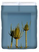 Seed Heads Reach For The Sky Duvet Cover