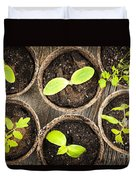 Seedlings Growing In Peat Moss Pots Duvet Cover