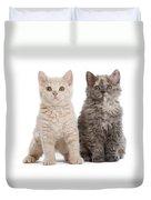 Selkirk Rex Kittens Duvet Cover