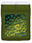 Sem Of Rapeseed Flower Duvet Cover by Eye of Science