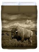 King Of The Herd Duvet Cover
