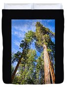 Sequoias Reaching To The Clouds In Mariposa Grove In Yosemite National Park-california Duvet Cover