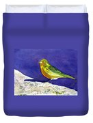 Serinus  Canaria  Aka The Canary Duvet Cover