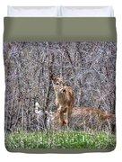 Sertoma Park Deer Duvet Cover