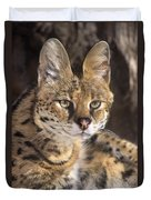 Serval Portrait Wildlife Rescue Duvet Cover