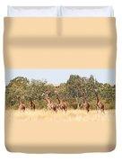 Seven Masai Giraffes Duvet Cover