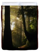 Shadow Dreams Duvet Cover by Jeff Swan