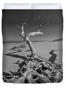 Shadows At Driftwood Beach Duvet Cover by Debra and Dave Vanderlaan