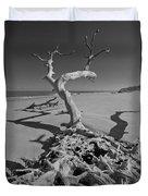 Shadows At Driftwood Beach Duvet Cover