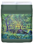 Shadows At Noon - Indian Landscapes Duvet Cover