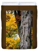 Shagbark Hickory Tree Duvet Cover