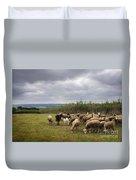 Sheep Pasturing Duvet Cover