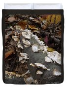 Shelf Mushrooms In Autumn Duvet Cover