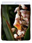 Shell Ginger Duvet Cover