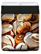 Shells Galore Duvet Cover