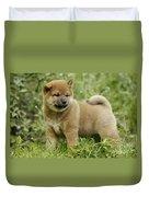 Shiba Inu Puppy Dog Duvet Cover