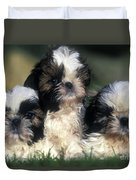Shih Tzu Puppy Dogs Duvet Cover