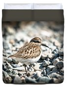 Shorebird Beauty Duvet Cover