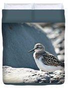 Shorebird Duvet Cover