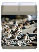 Shorebird Rest Time Duvet Cover