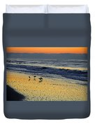 Shorebirds At Dawn Duvet Cover