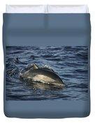 Short-beaked Common Dolphin Sea Duvet Cover