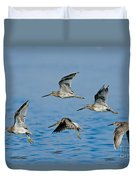 Short-billed Dowitchers In Flight Duvet Cover